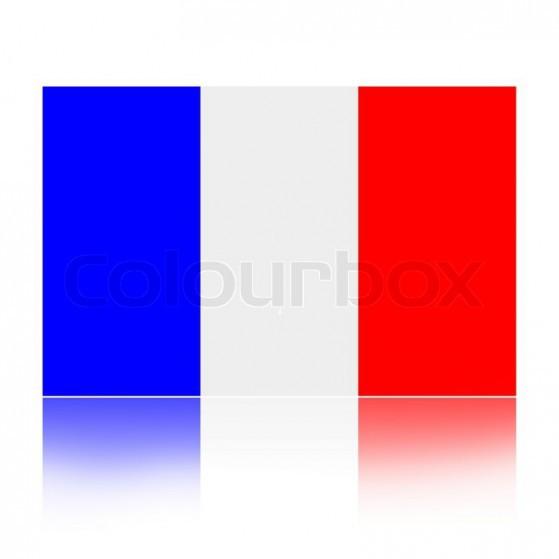 Fransk flag 2017 I